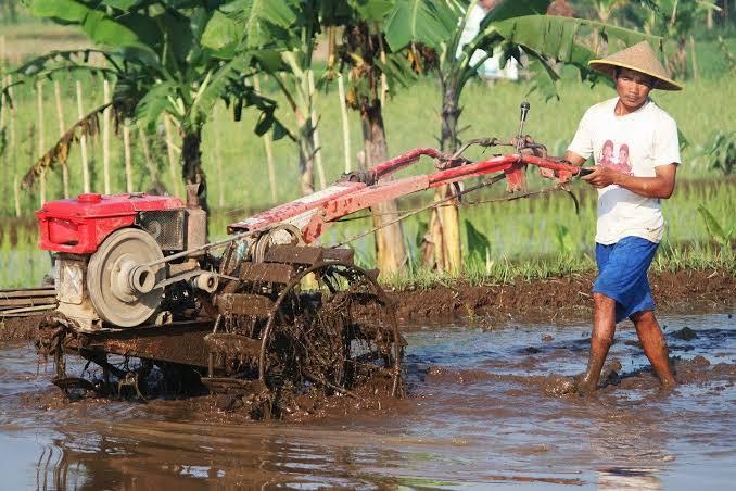 Petani Sampang Mengeluh Pembelian Pupuk Dibatasi