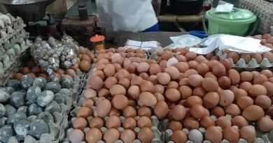 Pedagang Mengeluh, Harga Telur Pasang Surut di Sampang